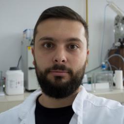 Andrei Bita