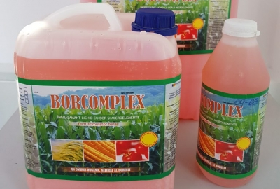 Borcomplex
