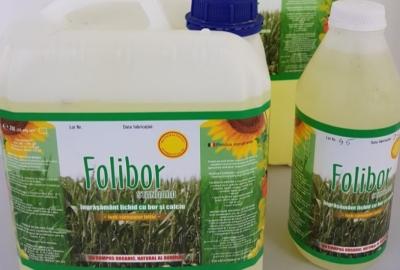 Folibor Standard